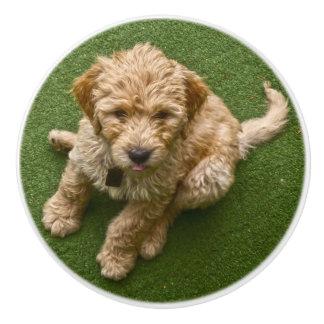 Adorable Puppy Ceramic Knob