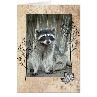 Adorable Raccoon Card