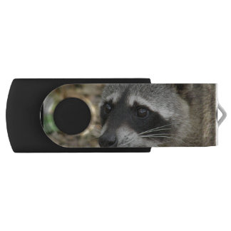 Adorable Raccoon USB Flash Drive