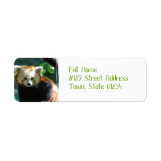 Adorable Red Panda Address Labels