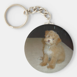 Adorable Schnoodle puppy Basic Round Button Key Ring