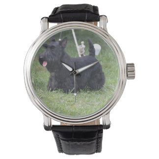 Adorable Scottish Terrier Watch