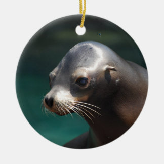 Adorable Sea Lion Christmas Ornament