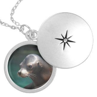 Adorable Sea Lion Locket Necklace