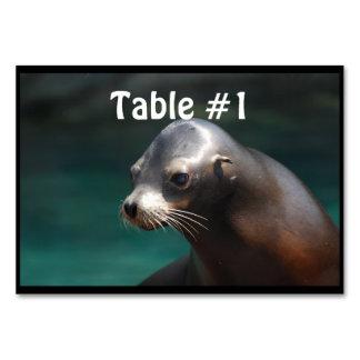 Adorable Sea Lion Table Card
