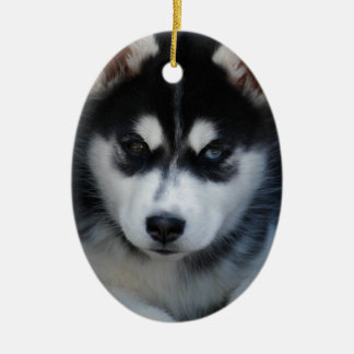 Adorable Siberian Husky Sled Dog Puppy Ceramic Oval Decoration