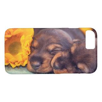 Adorable sleeping Doxen puppies iPhone 8/7 Case