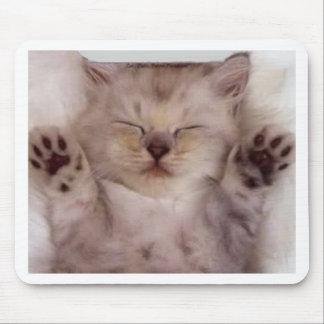 Adorable Sleeping Kitten Mousepad