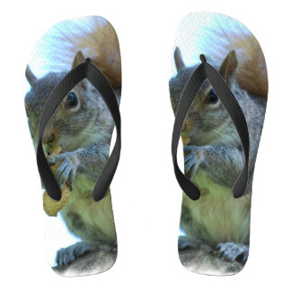 Adorable Squirrel Flip Flops