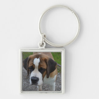 Adorable St Bernard Silver-Colored Square Key Ring