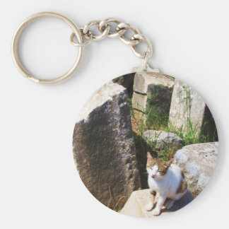 Adorable stray cat living in the ruins of Ephesus Basic Round Button Key Ring