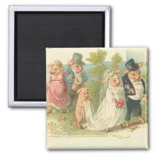 Adorable Vintage Pig Bride and Groom Magnets