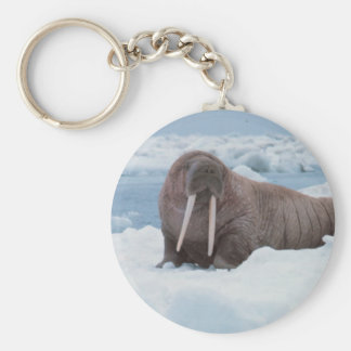 Adorable Walrus Basic Round Button Key Ring
