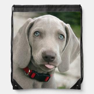 Adorable weimaraner puppy drawstring bag