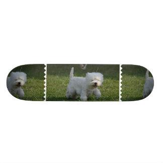 Adorable West Highland Terrier Skate Board Decks