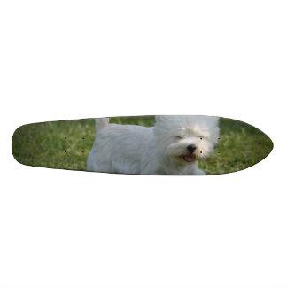 Adorable West Highland Terrier Skateboard Deck