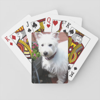 Adorable Westie playing cards