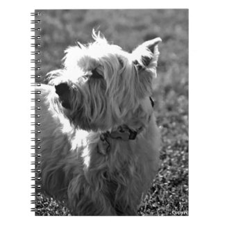 Adorable Westie Terrier Collection Spiral Notebooks