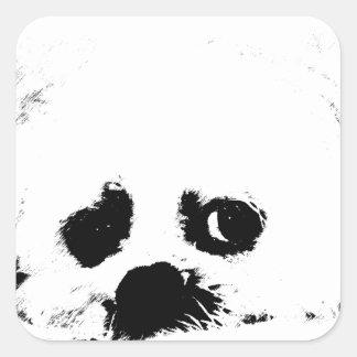 Adorable white Maltese puppy dog Square Sticker