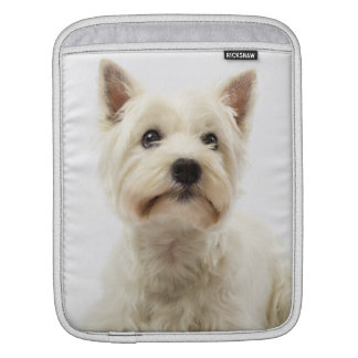 Adorable White West Highland Terrier iPad Sleeve