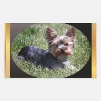 Adorable Yorkie Buddy Gifts Rectangular Sticker