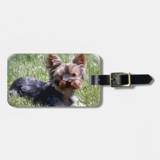 Adorable Yorkie Multiple Products Selected Luggage Tag