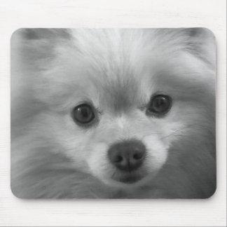 Adorably Cute Pomeranian Puppy Mouse Mat