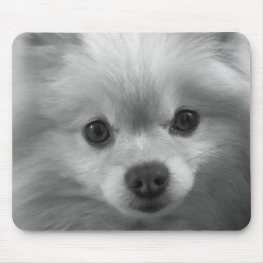 Adorably Cute Pomeranian Puppy Mouse Mat