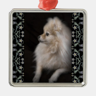 Adorably Cute Posing Pomeranian Puppy Silver-Colored Square Decoration