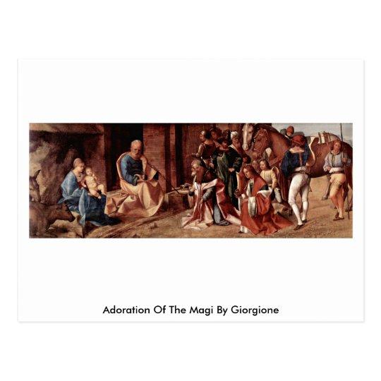 Adoration Of The Magi By Giorgione Postcard