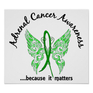 Adrenal Cancer Butterfly 6.1 Poster