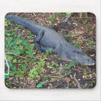 adult alligator mouse mat