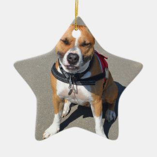 Adult American Staffordshire Terrier Dog Ceramic Star Decoration