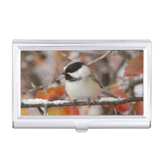 Adult Black-capped Chickadee in Snow, Grand Business Card Holder
