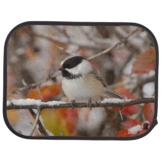 Adult Black-capped Chickadee in Snow, Grand Car Mat