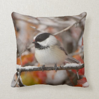 Adult Black-capped Chickadee in Snow, Grand Cushion