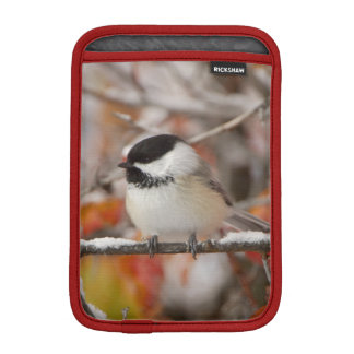 Adult Black-capped Chickadee in Snow, Grand iPad Mini Sleeve