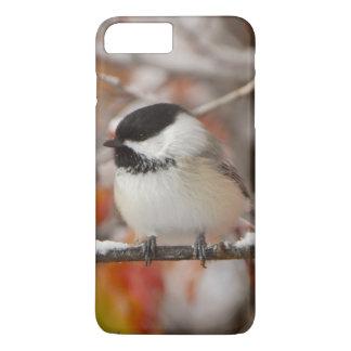 Adult Black-capped Chickadee in Snow, Grand iPhone 8 Plus/7 Plus Case