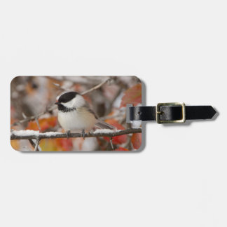 Adult Black-capped Chickadee in Snow, Grand Luggage Tag