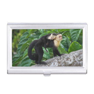 Adult Capuchin Monkey Carrying Baby On Its Back Business Card Holder