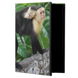 Adult Capuchin Monkey Carrying Baby On Its Back Cover For iPad Air