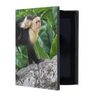 Adult Capuchin Monkey Carrying Baby On Its Back iPad Cover