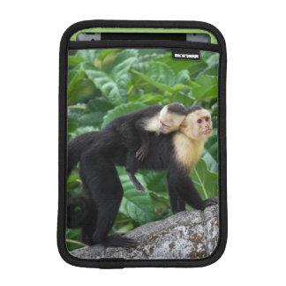 Adult Capuchin Monkey Carrying Baby On Its Back iPad Mini Sleeve