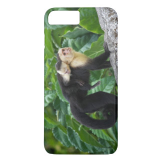Adult Capuchin Monkey Carrying Baby On Its Back iPhone 8 Plus/7 Plus Case