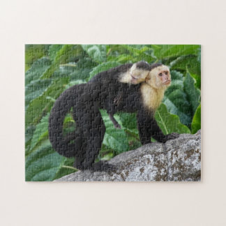 Adult Capuchin Monkey Carrying Baby On Its Back Jigsaw Puzzle