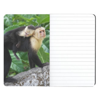 Adult Capuchin Monkey Carrying Baby On Its Back Journal