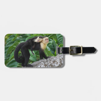 Adult Capuchin Monkey Carrying Baby On Its Back Luggage Tag