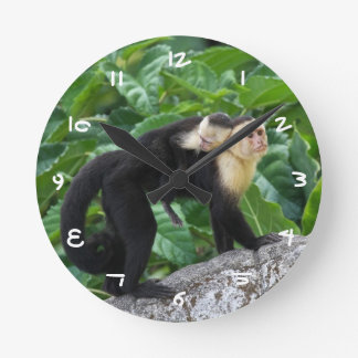 Adult Capuchin Monkey Carrying Baby On Its Back Round Clock
