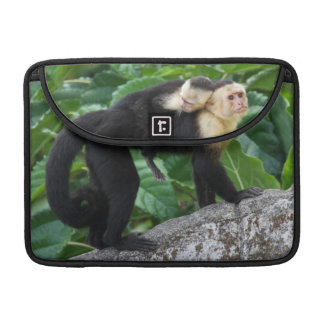 Adult Capuchin Monkey Carrying Baby On Its Back Sleeve For MacBook Pro