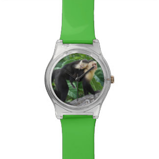 Adult Capuchin Monkey Carrying Baby On Its Back Wristwatches